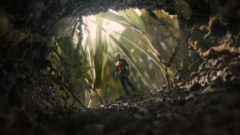 Szenenbild aus Ant-Man | © Walt Disney