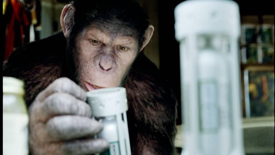 Szenenbild aus Planet der Affen: Prevolution | © Twentieth Century Fox