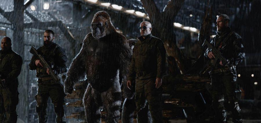 Planet der Affen: Survival | © Twentieth Century Fox