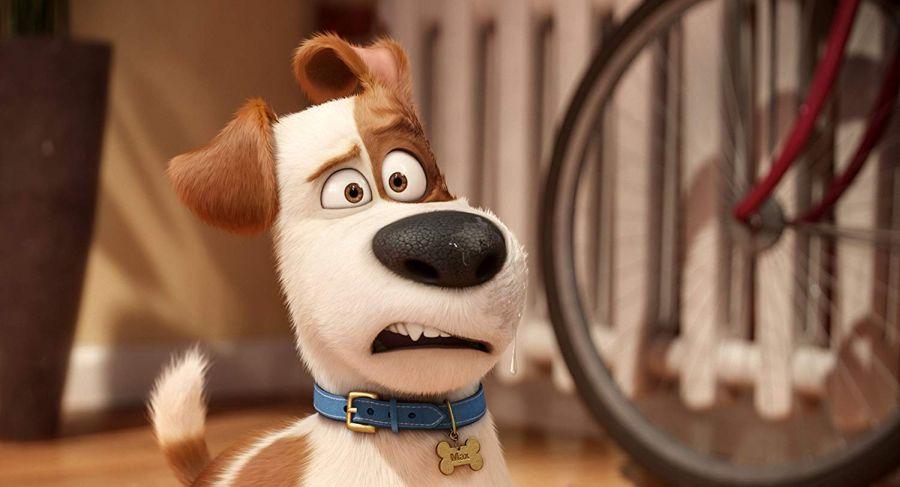Szenenbild aus Pets | © Universal Pictures